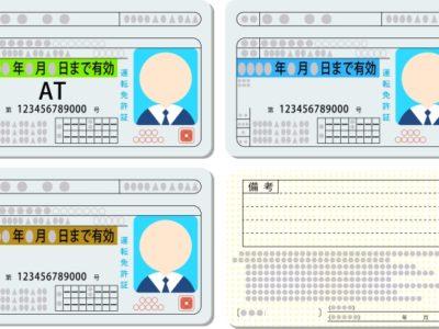 https://drive-license.com/driver-licence-color/