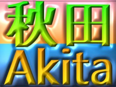 https://drive-license.com/training-camp-akita/